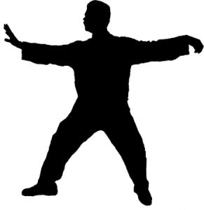 Qi Gong Gymnastique Traditionnelle
